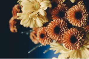 daniela-mengarelli-tendenze-matrimonio-autunno-2021_04